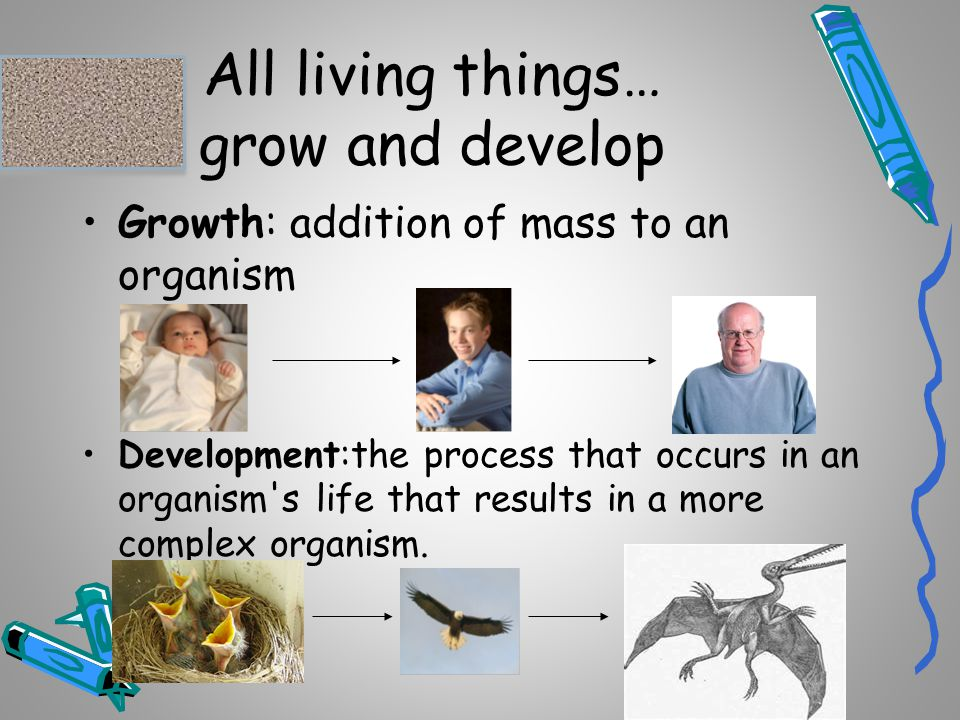 All living things… grow and develop