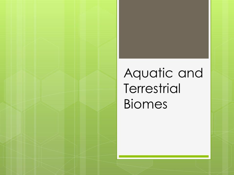 Aquatic and Terrestrial Biomes
