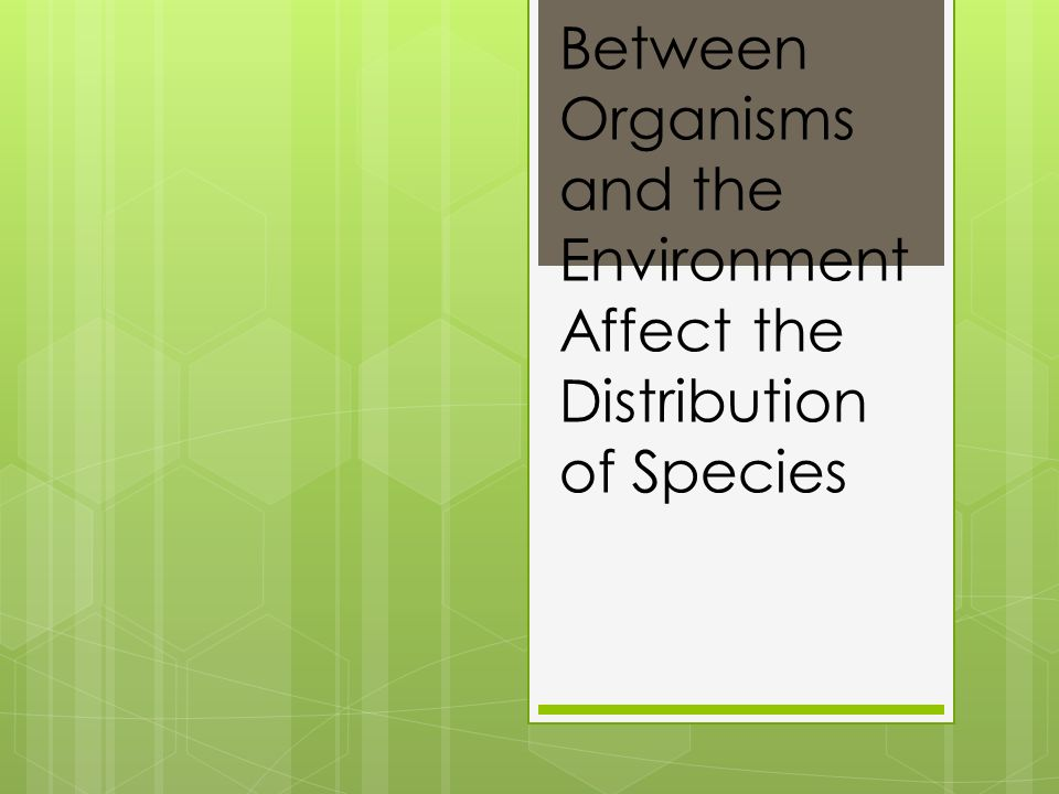 Interactions Between Organisms and the Environment Affect the Distribution of Species