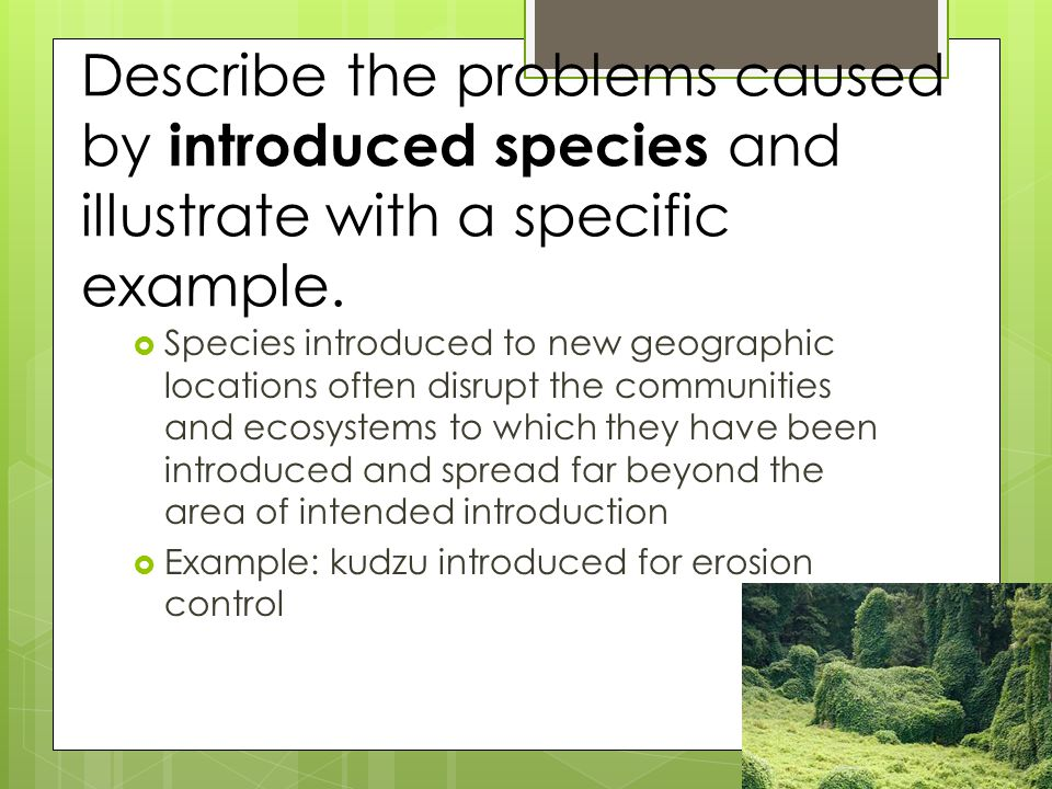 Describe the problems caused by introduced species and illustrate with a specific example.