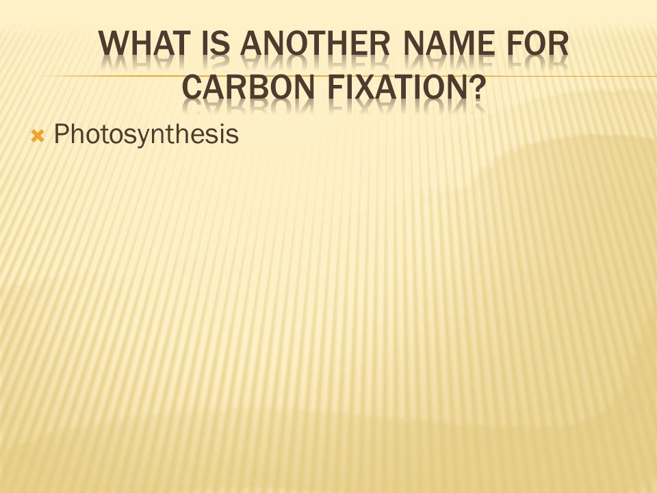 What is another name for carbon fixation