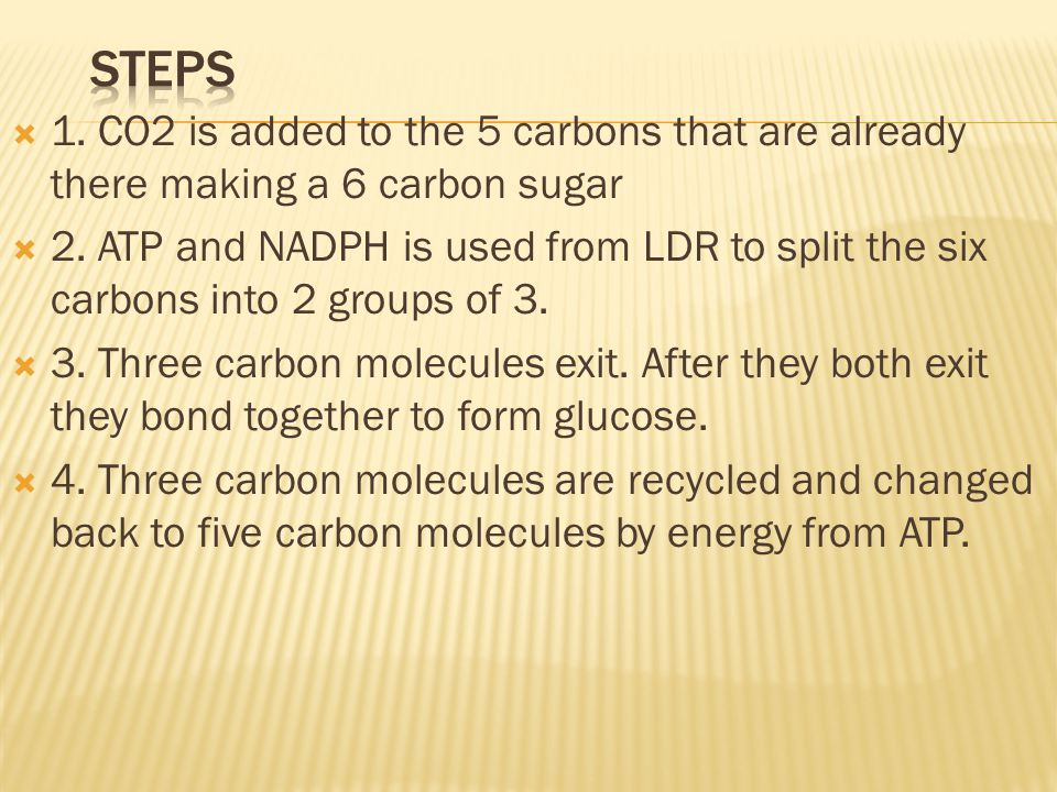 Steps 1. CO2 is added to the 5 carbons that are already there making a 6 carbon sugar.