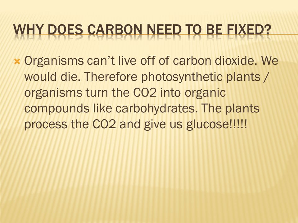 Why does carbon need to be fixed