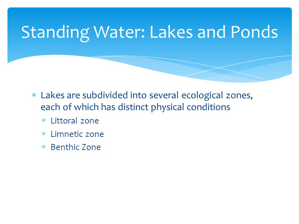 Standing Water: Lakes and Ponds