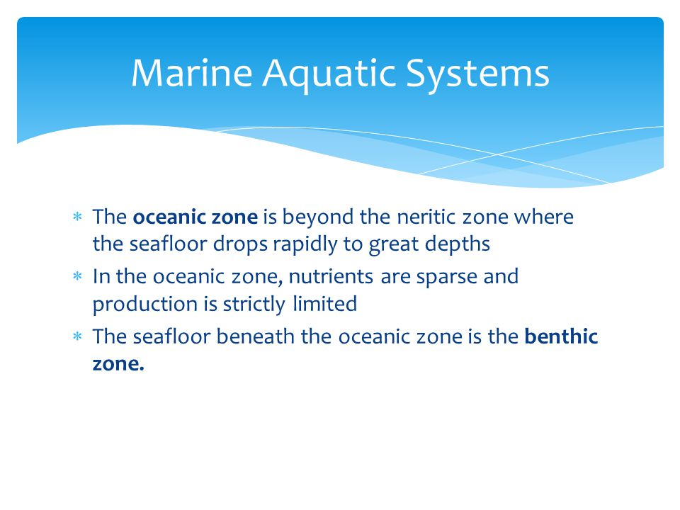 Marine Aquatic Systems