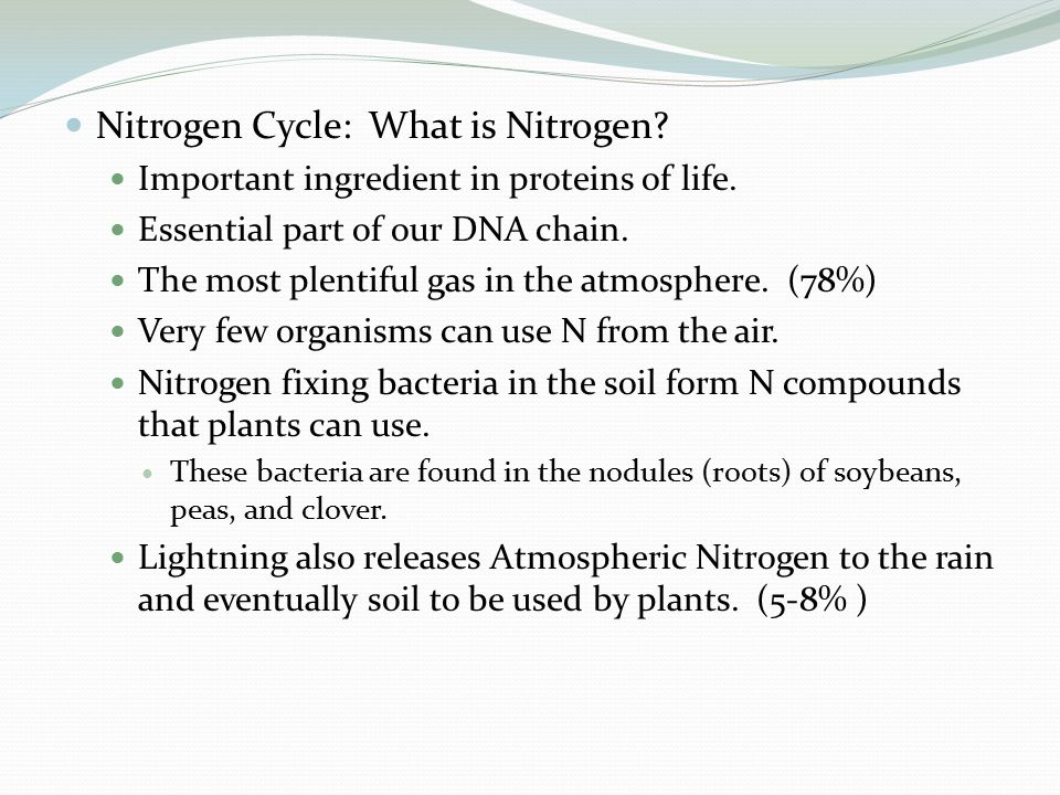 Nitrogen Cycle: What is Nitrogen