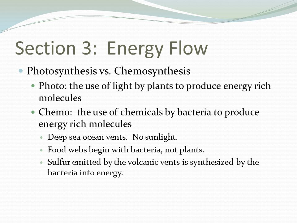 Section 3: Energy Flow Photosynthesis vs. Chemosynthesis