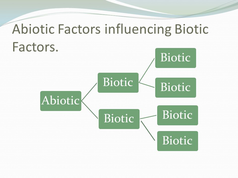 Abiotic Factors influencing Biotic Factors.