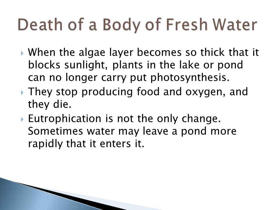 Death of a Body of Fresh Water