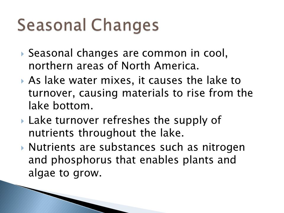 Seasonal Changes Seasonal changes are common in cool, northern areas of North America.