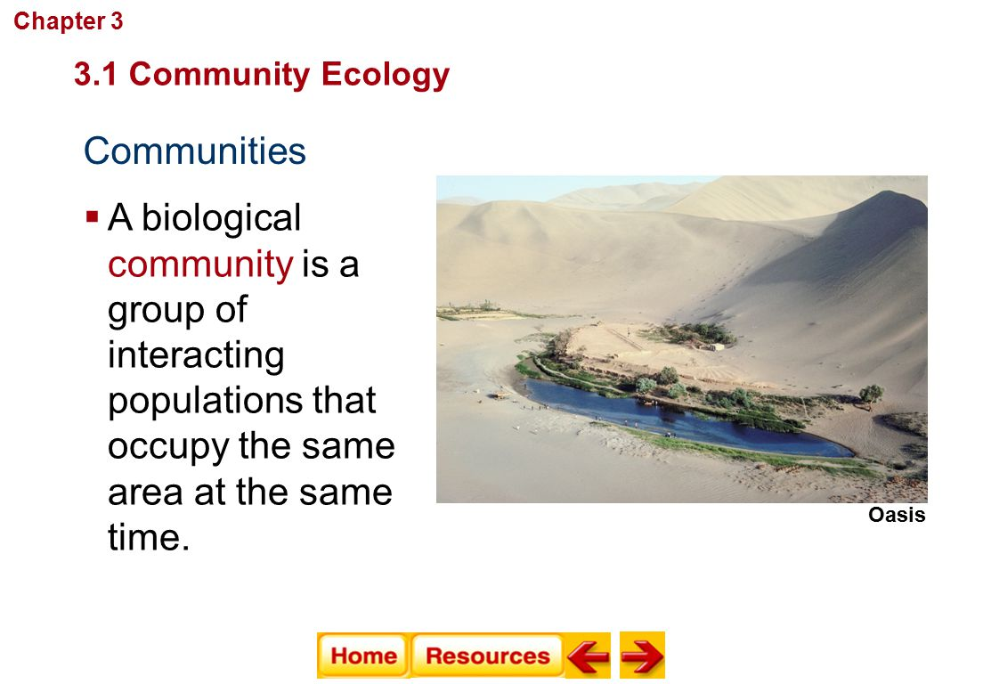 Chapter 3 Communities, Biomes, and Ecosystems. 3.1 Community Ecology. Communities.
