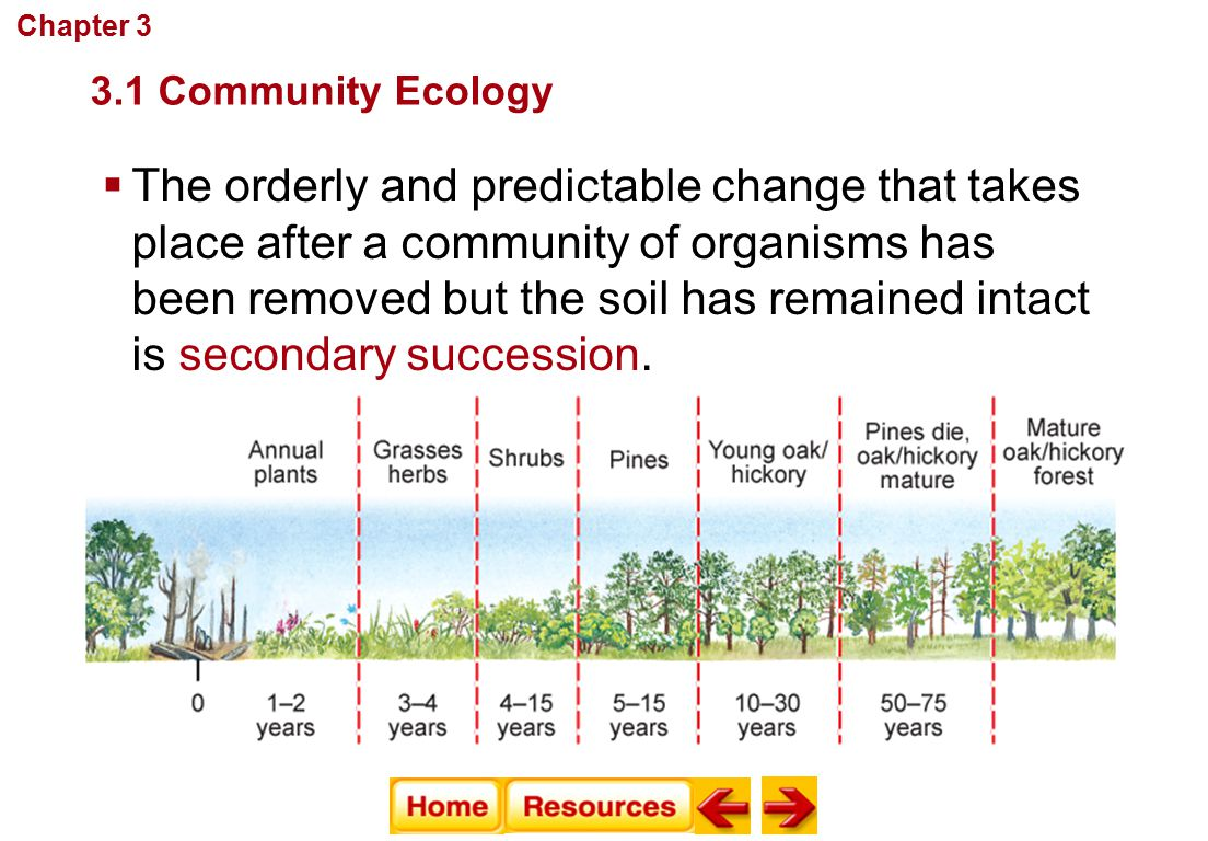 Chapter 3 Communities, Biomes, and Ecosystems. 3.1 Community Ecology.