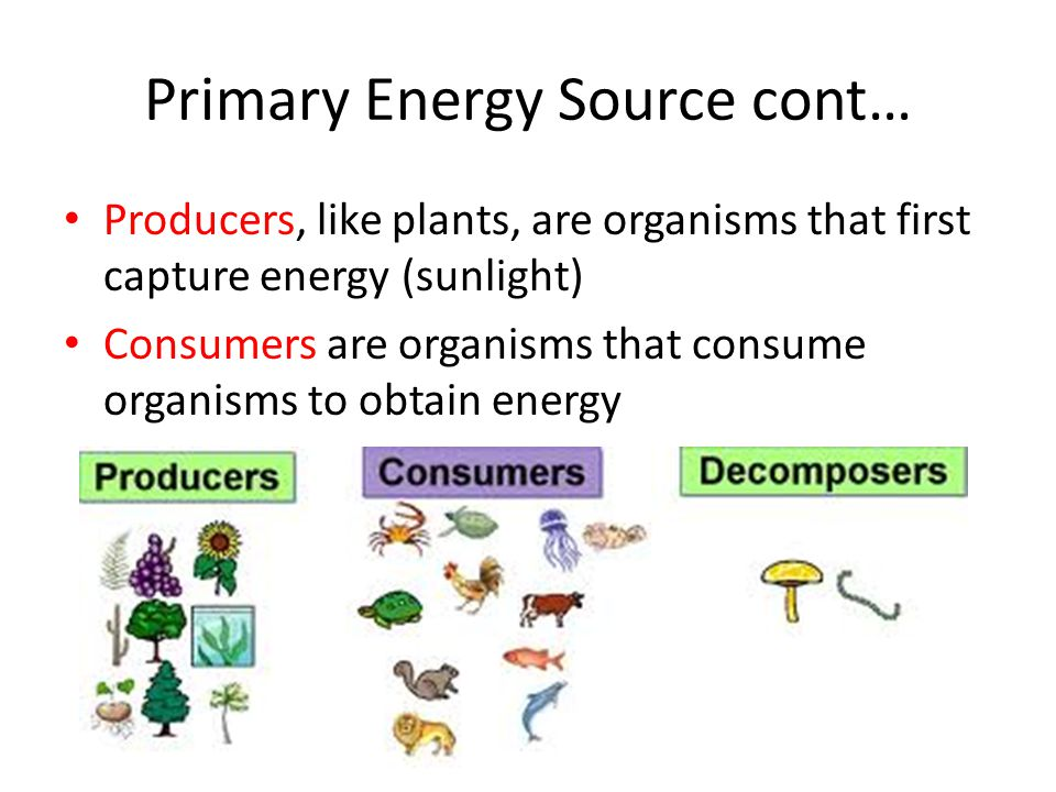 Primary Energy Source cont…
