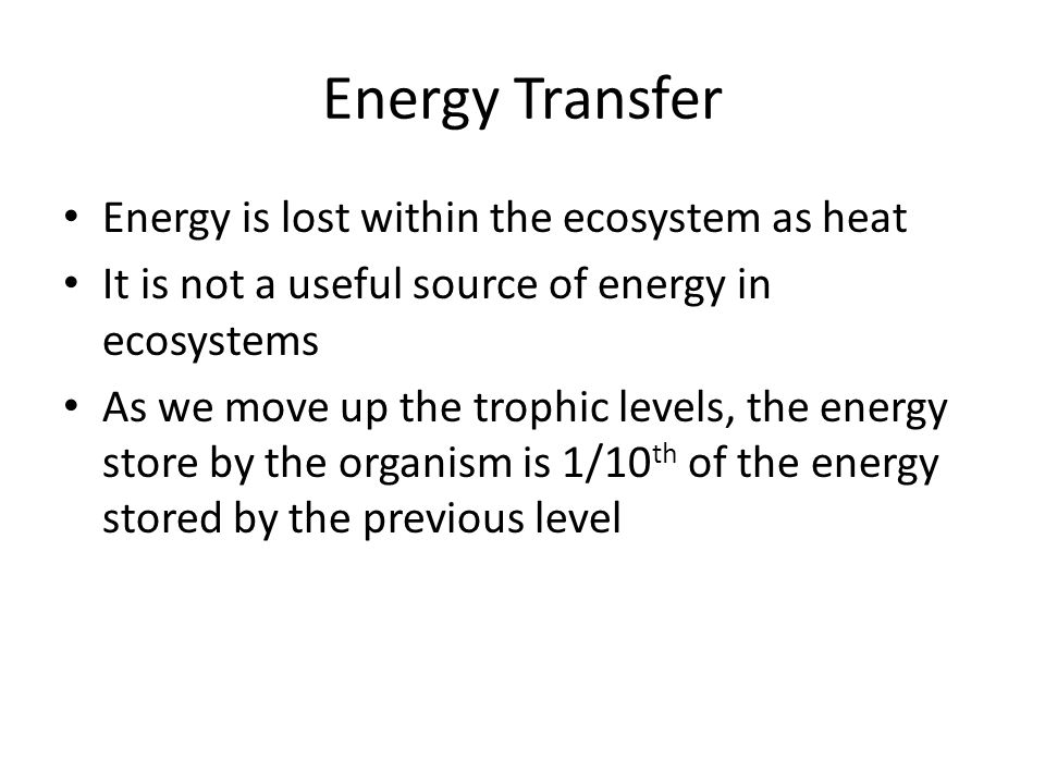 Energy Transfer Energy is lost within the ecosystem as heat