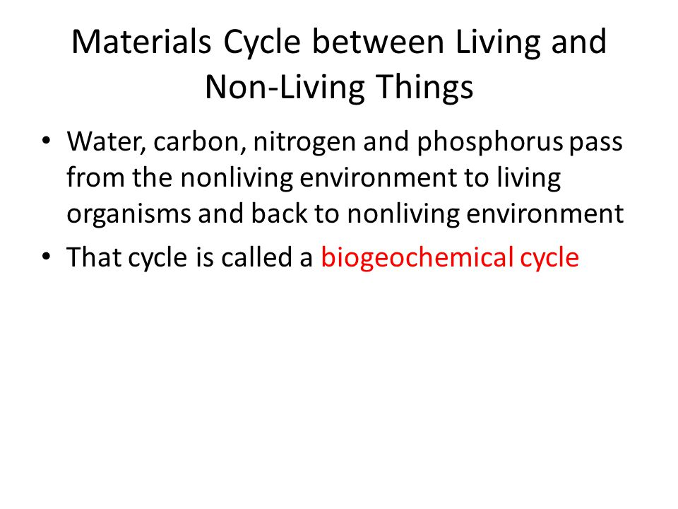 Materials Cycle between Living and Non-Living Things