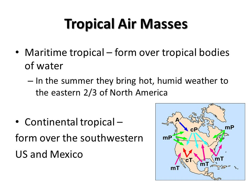 Tropical Air Masses Maritime tropical – form over tropical bodies of water.