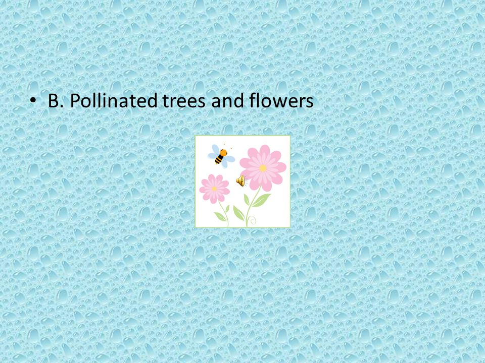 B. Pollinated trees and flowers