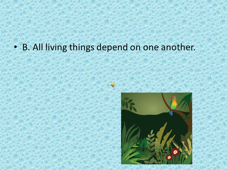 B. All living things depend on one another.