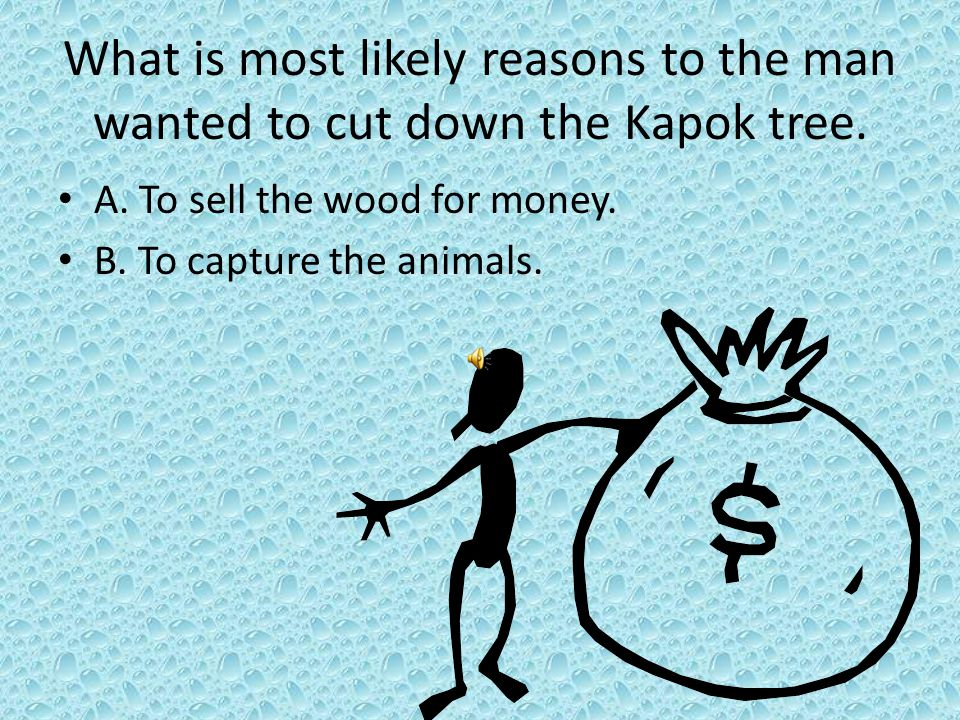 What is most likely reasons to the man wanted to cut down the Kapok tree.