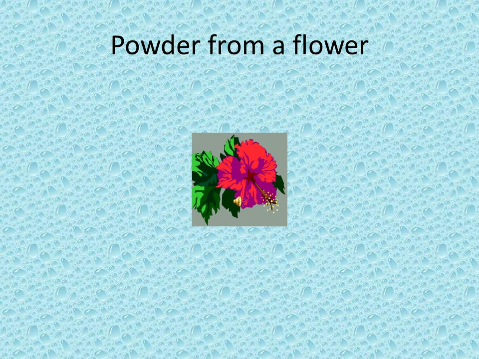 Powder from a flower