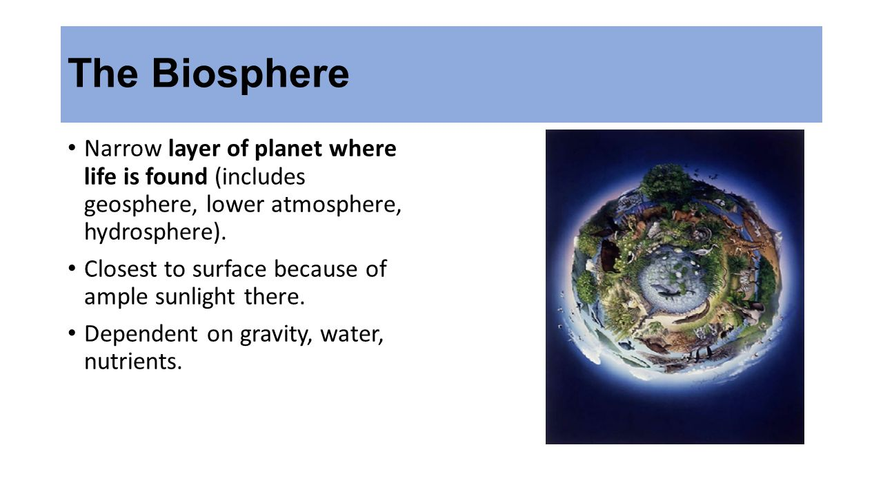 The Biosphere Narrow layer of planet where life is found (includes geosphere, lower atmosphere, hydrosphere).