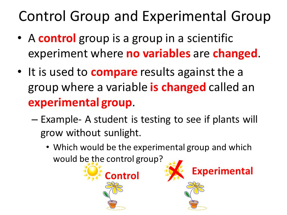 Control Group and Experimental Group