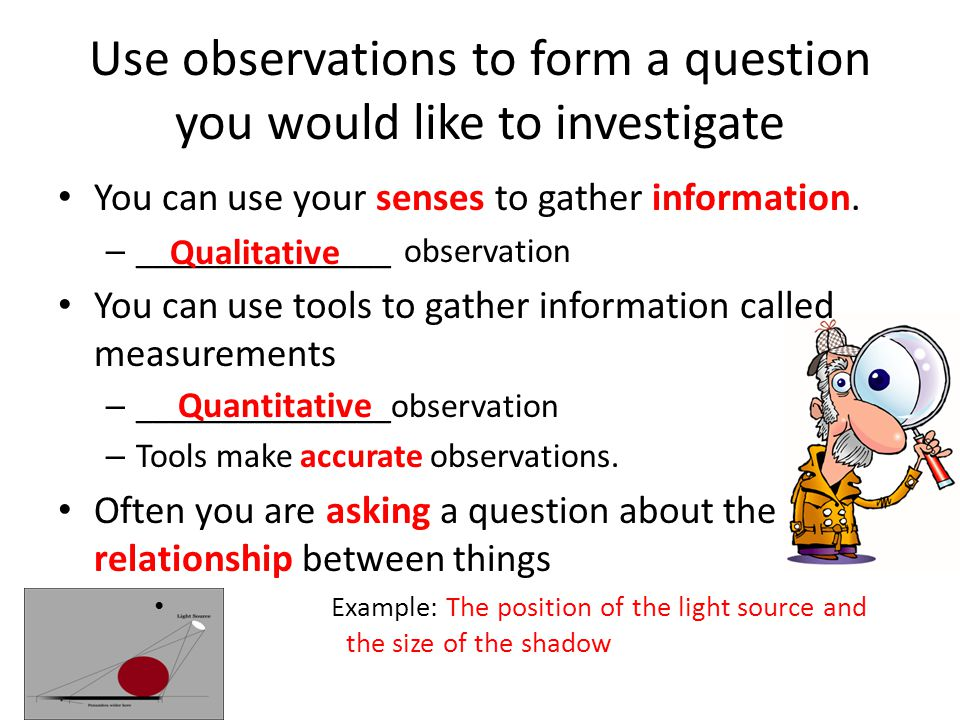Use observations to form a question you would like to investigate