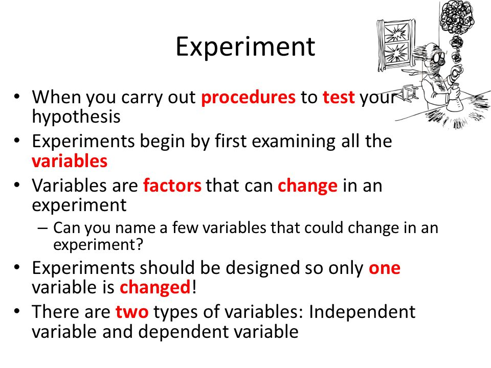 Experiment When you carry out procedures to test your hypothesis