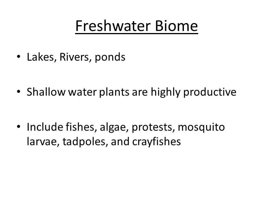 Freshwater Biome Lakes, Rivers, ponds