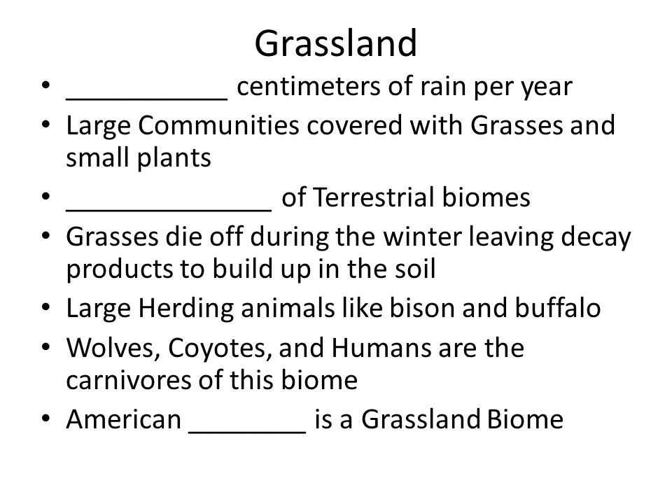 Grassland ___________ centimeters of rain per year