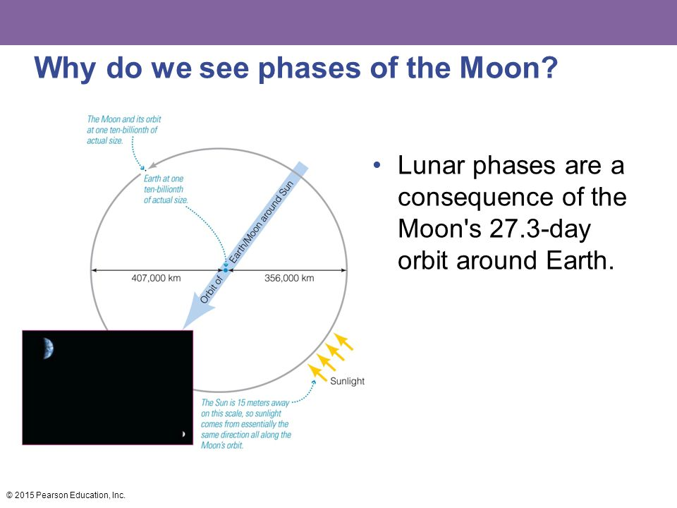 Why do we see phases of the Moon