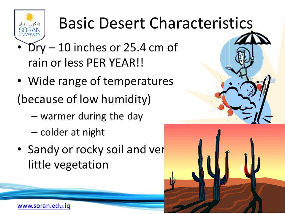 Basic Desert Characteristics