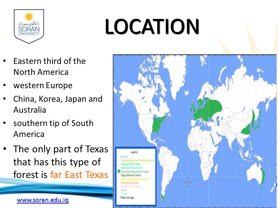 LOCATION Eastern third of the North America. western Europe. China, Korea, Japan and Australia. southern tip of South America.