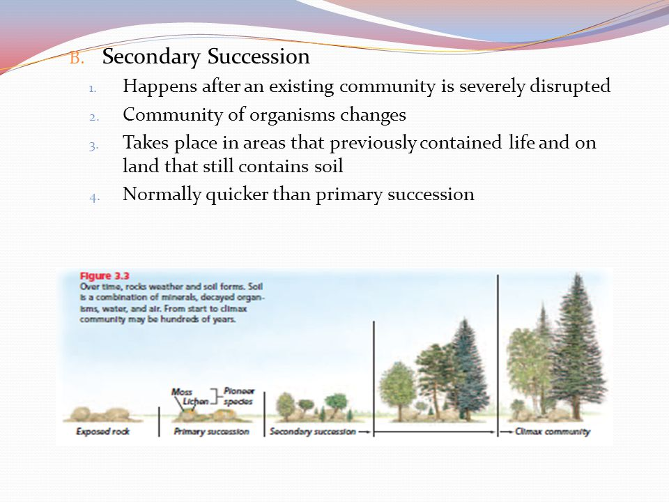 Secondary Succession Happens after an existing community is severely disrupted. Community of organisms changes.
