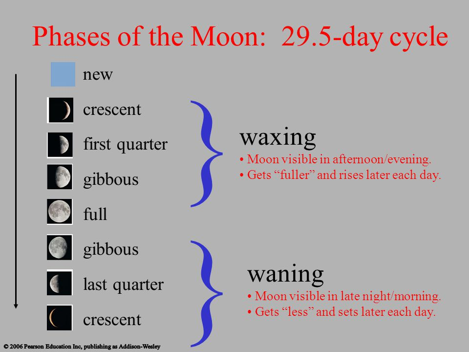 } } Phases of the Moon: 29.5-day cycle waxing waning new crescent