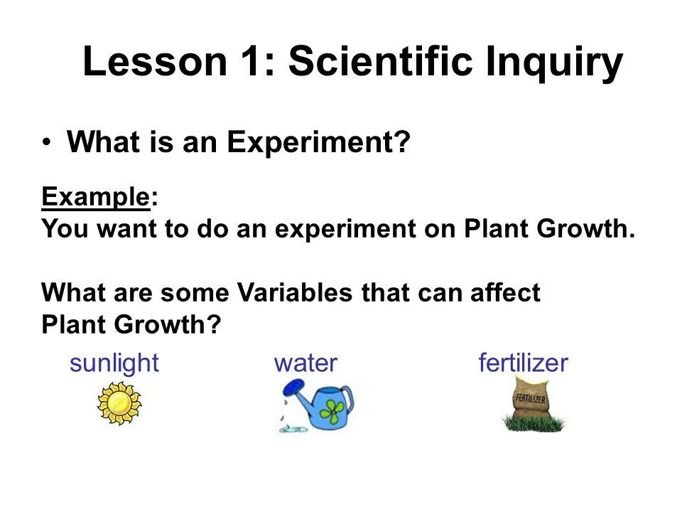 Lesson 1: Scientific Inquiry