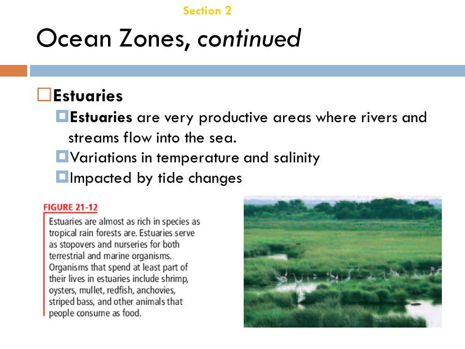 Ocean Zones, continued Estuaries Chapter 21