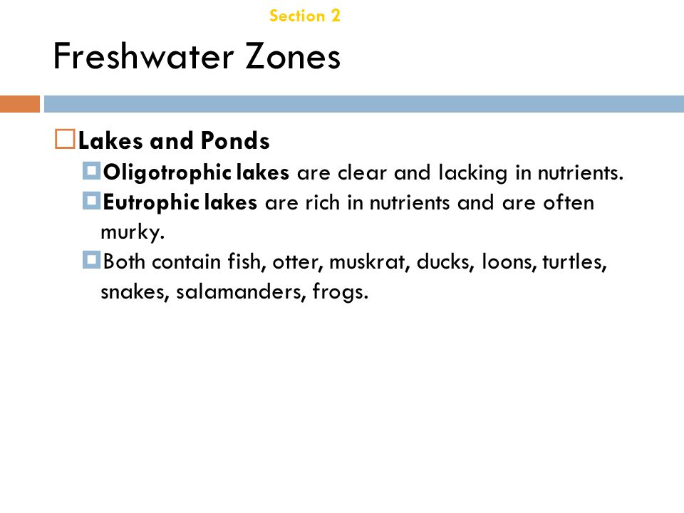 Freshwater Zones Lakes and Ponds Chapter 21