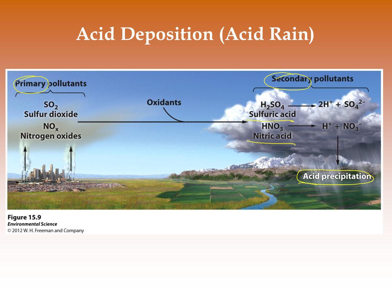 Acid Deposition (Acid Rain)