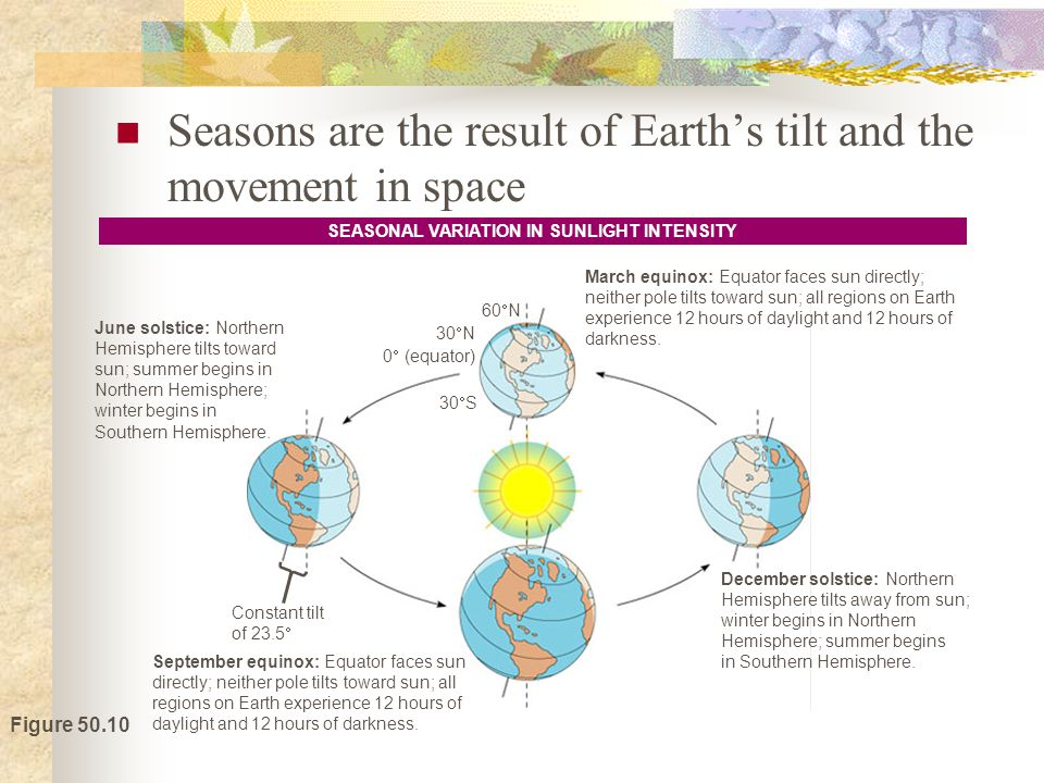 SEASONAL VARIATION IN SUNLIGHT INTENSITY