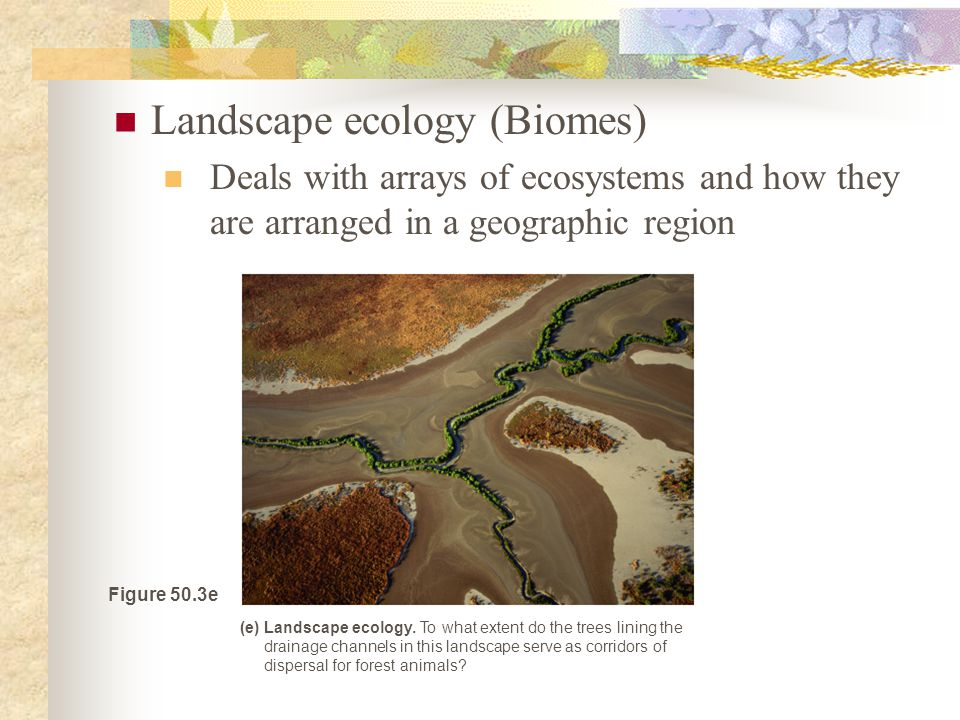 Landscape ecology (Biomes)