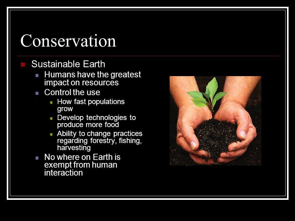 Conservation Sustainable Earth
