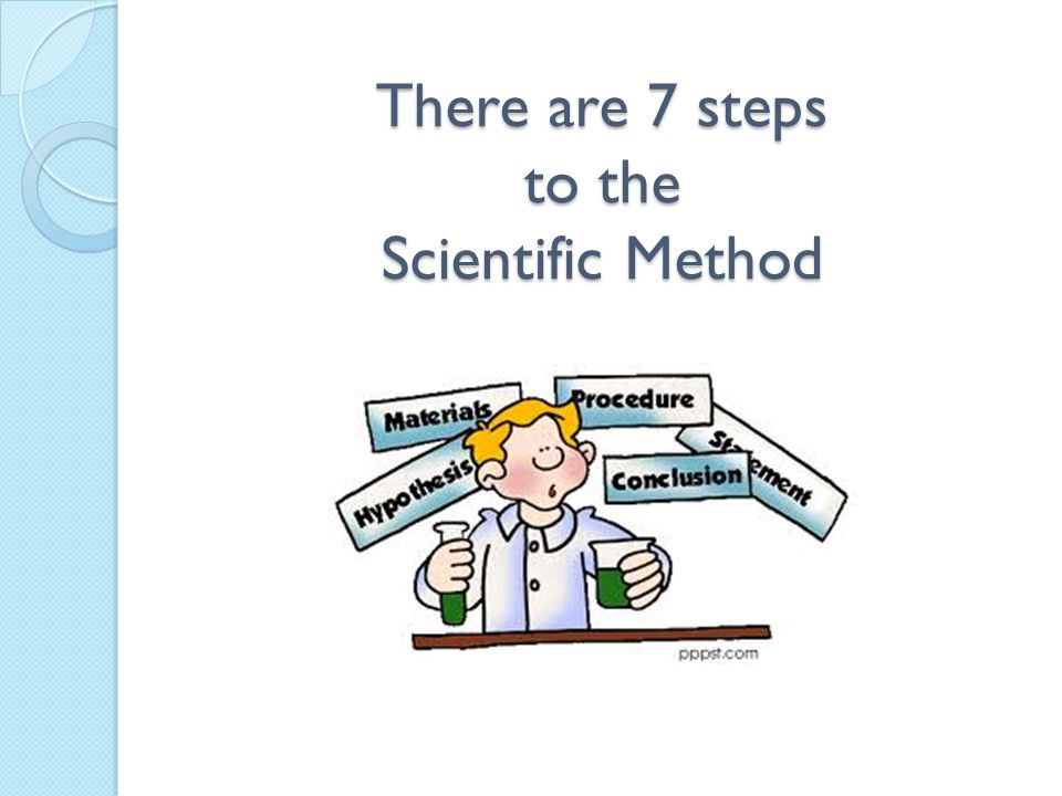 There are 7 steps to the Scientific Method