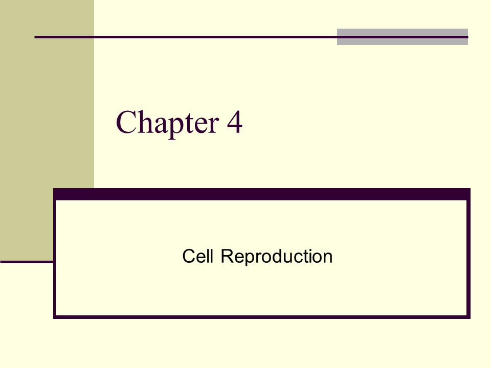Chapter 4 Cell Reproduction