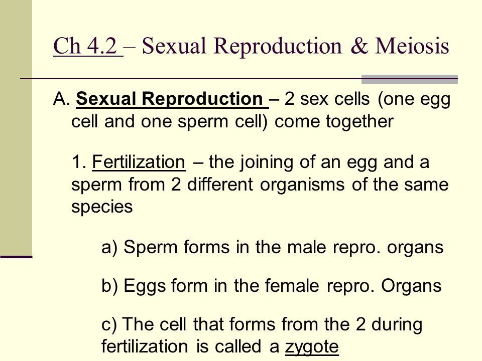 Ch 4.2 – Sexual Reproduction & Meiosis