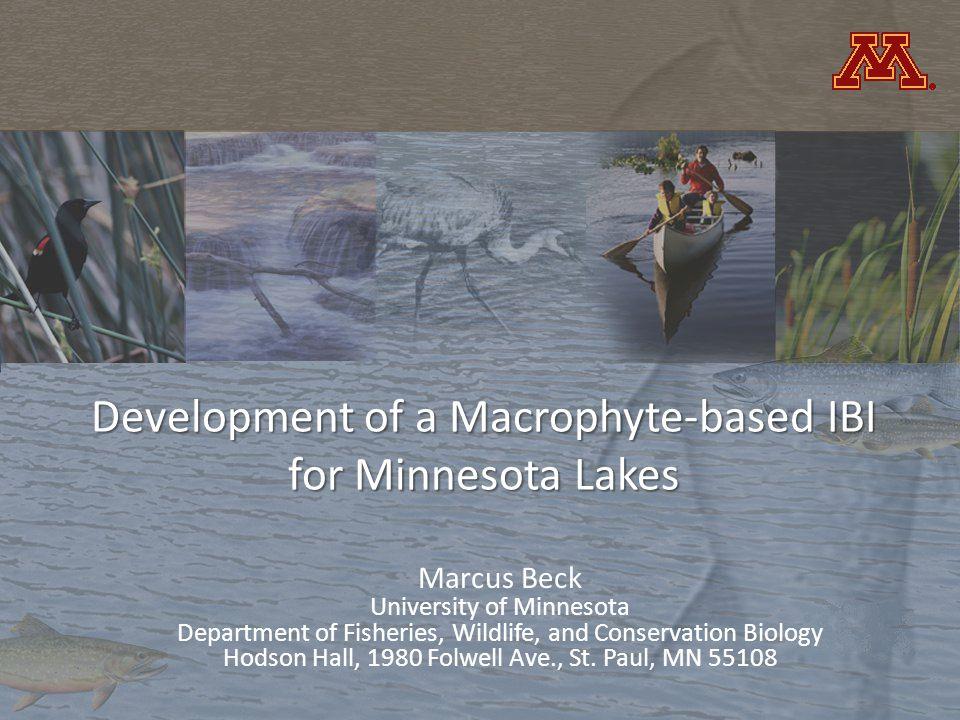 Development of a Macrophyte-based IBI for Minnesota Lakes