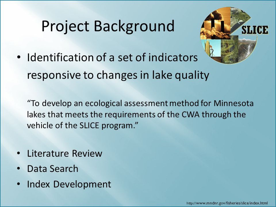 Project Background Identification of a set of indicators
