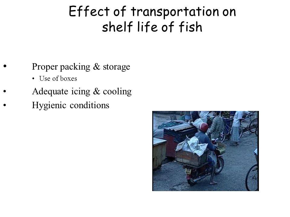 Effect of transportation on shelf life of fish