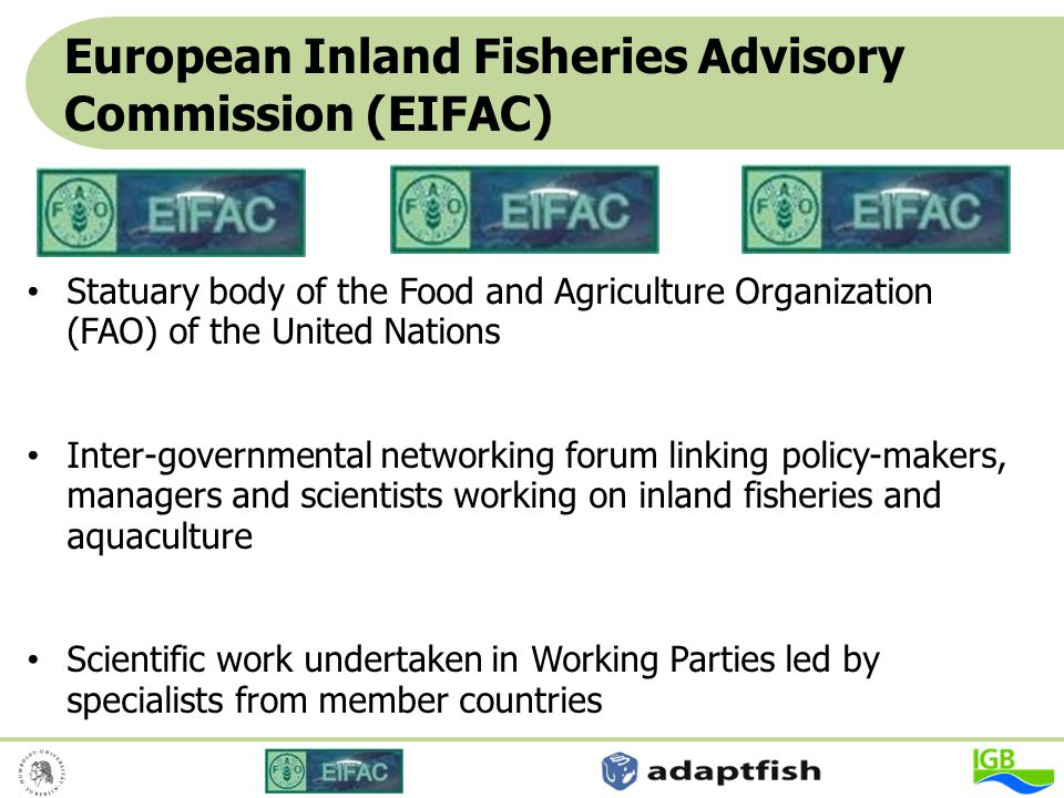 European Inland Fisheries Advisory Commission (EIFAC)