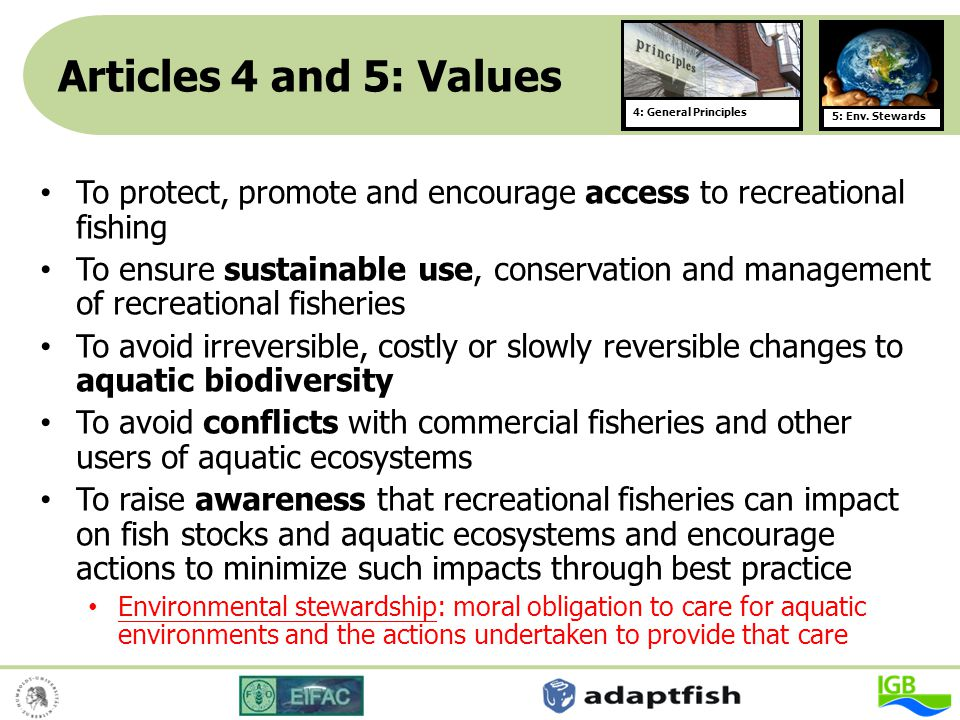 Articles 4 and 5: Values 4: General Principles. 5: Env. Stewards. To protect, promote and encourage access to recreational fishing.
